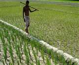 ऋणी किसानों पर बीमा लेने की नहीं होगी अब बाध्यता, सीजन से पहले राज्यों को जमा कराना होगा अपना हिस्सा