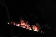 बुड़घुना के जंगल आग से धधके, पूरा क्षेत्र धुएं की चादर से ढका