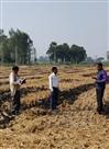 पराली जलाने वाले 15 किसान भरेंगे आर्थिक दंड