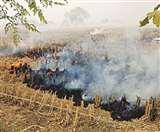 अलीगढ़ में पराली जलाने वालों पर एफआइआर की तैयारी Aligarh news