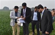 फसलों की ई-गिरदावरी का काम जोरों पर, अब तब करनाल पूरे प्रदेश में अग्रणी : उपायुक्त
