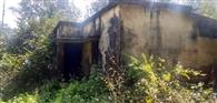 झाड़ियों में तब्दील हुआ किसान सहायक का आवास