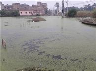 भारी बारिश के 23 दिनों बाद भी नहीं निकला है शहर के कई हिस्सों से पानी
