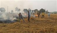 डीसी ने धान के अवशेष जला रहे किसान को पकड़वाया, एफआइआर दर्ज