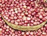प्याज की ऊंची कीमतों से मिलेगी राहत, महीने के अंत तक बाजार में आएगा 1,000 टन विदेशी प्याज