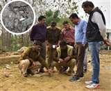 लखनऊ में तेंदुए की दशहत, पड़वा पर हमले की सूचना पर वन विभाग सतर्क-रातभर की गई कांबिंग
