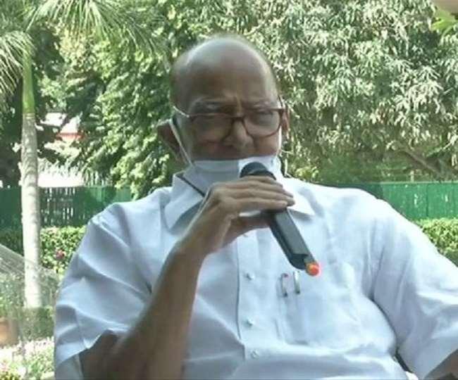 एनसीपी चीफ शरद पवार की प्रेस काफ्रेंस। (फाइल फोटो)