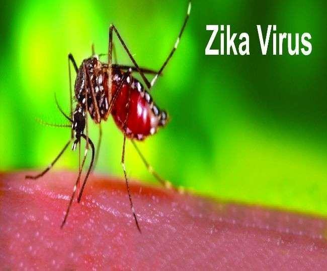केरल में पाया गया जीका वायरस का नया मामला।(फोटो: दैनिक जागरण)