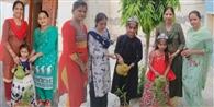 किडजी और एमबी इंटरनेशनल स्कूल के बच्चों ने पौधे लगाकर मनाया जन्मदिन