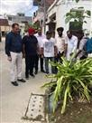 डेंगू के खात्मे के लिए 15 टीमें शहर में निकलीं
