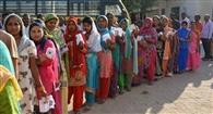 जिले में 65 फीसद मतदान, कालका सीट पर 70.5 और पंचकूला पर 59.1 फीसद वोटिंग