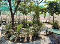 15 मार्च से आम लोगों के लिए खोला जाएगा तितली पार्क