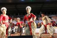 एकता महोत्सव में बही भोजपुरी गीतों की बयार, हास्य कलाकारों ने भी खूब गुदगुदाया