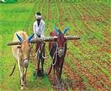 PM-KISAN: इस स्कीम को पूरे होने वाले हैं एक साल, करोड़ों किसानों को इस तरह मिल रहा फायदा