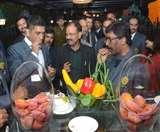 Dhoni: सिटी बजाते और ई रिक्शा की सवारी करते नजर आए धौनी, CM हेमंंत संग की गलबहियां