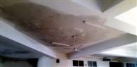 काम पर उठे सवाल, ओपीडी ब्लॉक की बिल्डिंग में छत से टपकने लगा पानी