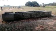 गोशाला खाली, खेतों में घूम रहे बेसहारा पशु