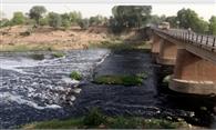 घग्घर नदी को प्रदूषित करने वालों पर होगी कार्रवाई