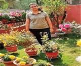 Jaivik Jamshedpur : रंग लाई वाटिका की मेहनत, छत पर खिले फूल Jamshedpur News