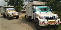 पूर्वी टुंडी में मवेशी लदे चार पिकअप वैन जब्त, चालक गिरफ्तार