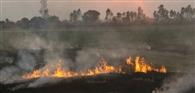 पराली जलाने वालों पर कृषि विभाग सख्त