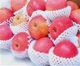 पटना पुलिस के जवानों को चाहिए 40 रुपये किलो सेब, नहीं मिला तो दुकानदार को पीटा Patna News