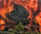 Climate Change बन रहा अल नीनो की वजह, दुनिया भुगतेगी नतीजे, वैज्ञानिकों ने किया Alert