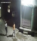 मोची मुहल्ले से 20 मिनट में कार चोरी, चोर सीसीटीवी में कैद
