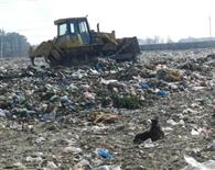रोजाना खुले में फेंका जा रहा 250 टन कचरा