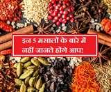 Unusual Indian Spices: 5 ऐसे अनोखे भारतीय मसाले जो बदल देंगे आपके खाने का स्वाद