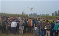 खेतों में उड़ाया ड्रोन, नहीं दिखा गुलदार