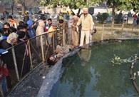 कत्ल या हादसा.. साढ़े तीन फीट पानी में डूबकर 29 साल के युवक की मौत