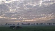 मौसम का यू टर्न, चार डिग्री गिरा तापमान, आज हो सकती है बरसात, किसान चिंतित