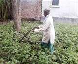आलू की फसल पर मिट्टी चढ़ाने में परेशानी हुई तो बना डाला उपकरण, जानें क्या है इसकी खासियत... West Champaran News