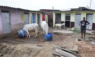 450 धन लेने के बावजूद नहीं बनवाया शौचालय, फिर भी जिला ओडीएफ