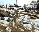 Jharkhand Weather Update: पलामू के पहाड़ों पर बर्फबारी सा नजारा; खूब पड़े ओले VIDEO