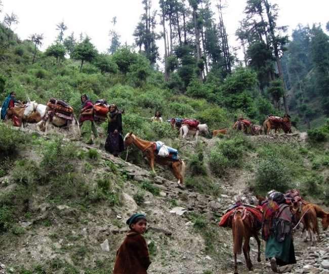 जनजातीय समुदायों की मदद के लिए तीन करोड़ रुपये का बजट भी तय किया है।