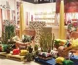 घरेलू मार्केट में तुर्की के कारपेट से प्रतिस्पर्धा झेल रहा पानीपत Panipat News