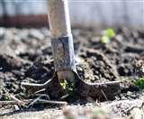 जानें, क्यों मिट्टी जांच के लिए 40 गांवों में शुरू किया गया है विशेष अभियान, क्या है उद्देश्य