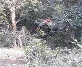 चंपावत में खाई में गिरा डंपर, भगवान बनकर पहुंचे आर्मी के जवान और चिकित्सक nainital news