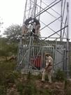 भूमि विवाद से परेशान व्यक्ति चढ़ा मोबाइल टॉवर पर