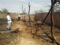 छप्पर में आग लगने से पशु जिंदा जले, फायर बिग्रेड ने पाया आग पर काबू