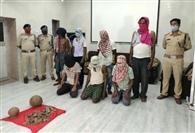 संबलपुर में पेंगोलिन की खाल के साथ सात गिरफ्तार