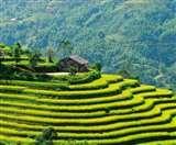 उत्तराखंड के पर्वतीय क्षेत्रों में होगी खेती तो थमेगा पलायन