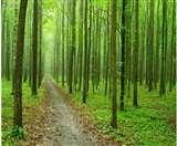 पांच हेक्टेयर से कम क्षेत्र को वनों की श्रेणी से बाहर रखने के सरकार के आदेश पर हाइकोर्ट की रोक