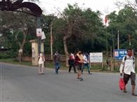 सिदरी हर्ल के 22 मजदूर पैदल निकल गए अपने गांव आरा