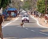 President Kovind in Jharkhand झारखंड आए राष्ट्रपति की सुरक्षा में दूसरी बार चूक, कारकेड के सामने आया कुत्ता