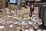 Varanasi में सीवर ओवरफ्लो और कूड़ा नहीं उठने से हाेने लगी परेशान, कई इलाकों में गंदगी