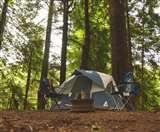Curfew: स्टे एट होम को दरकिनार कर धर्मशाला के जंगल में पिकनिक मना रहे जान के दुश्मन