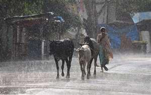 मौसम का पलटवार, बारिश संग ओलों की बौछार